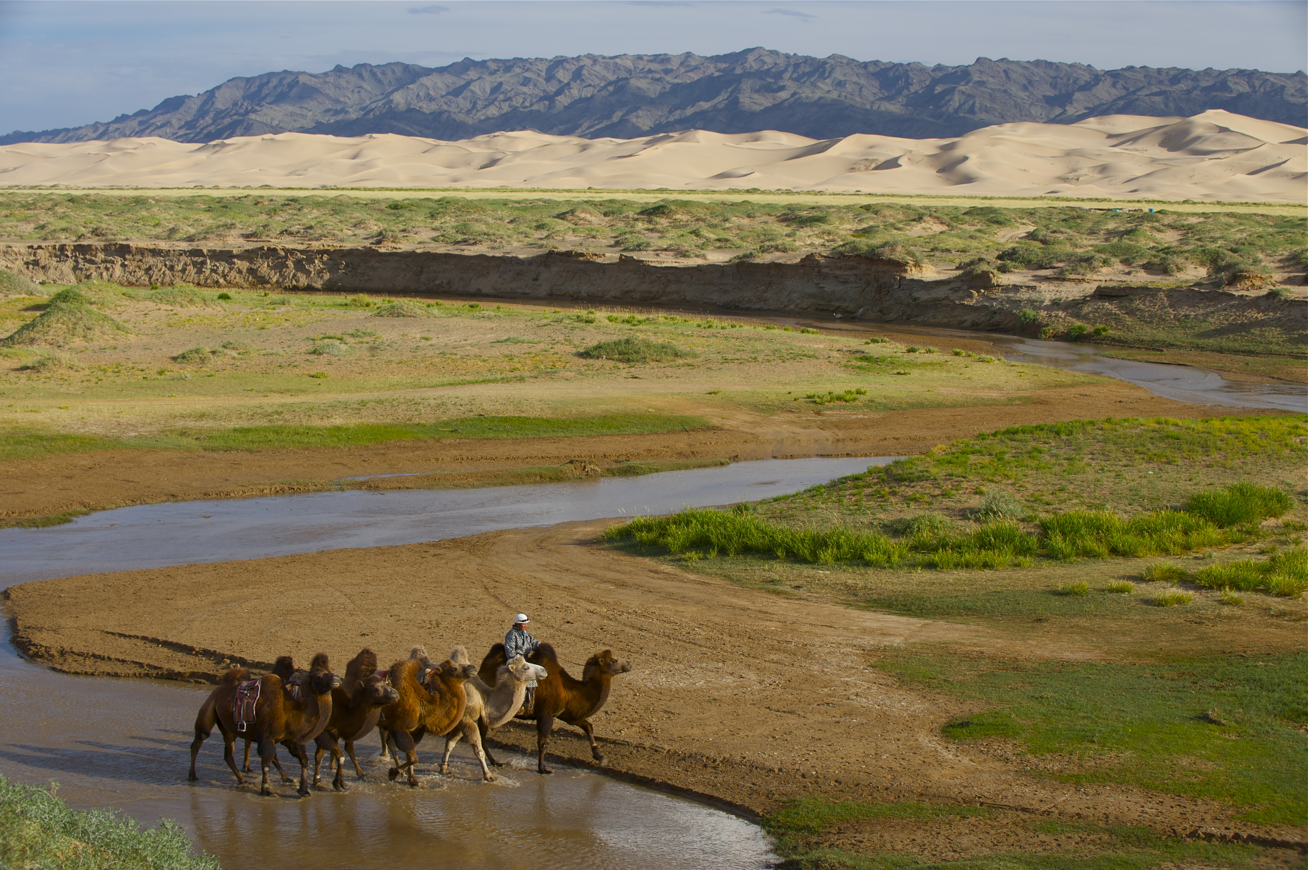The Gobi Desert Zendmen Travel Mongolia