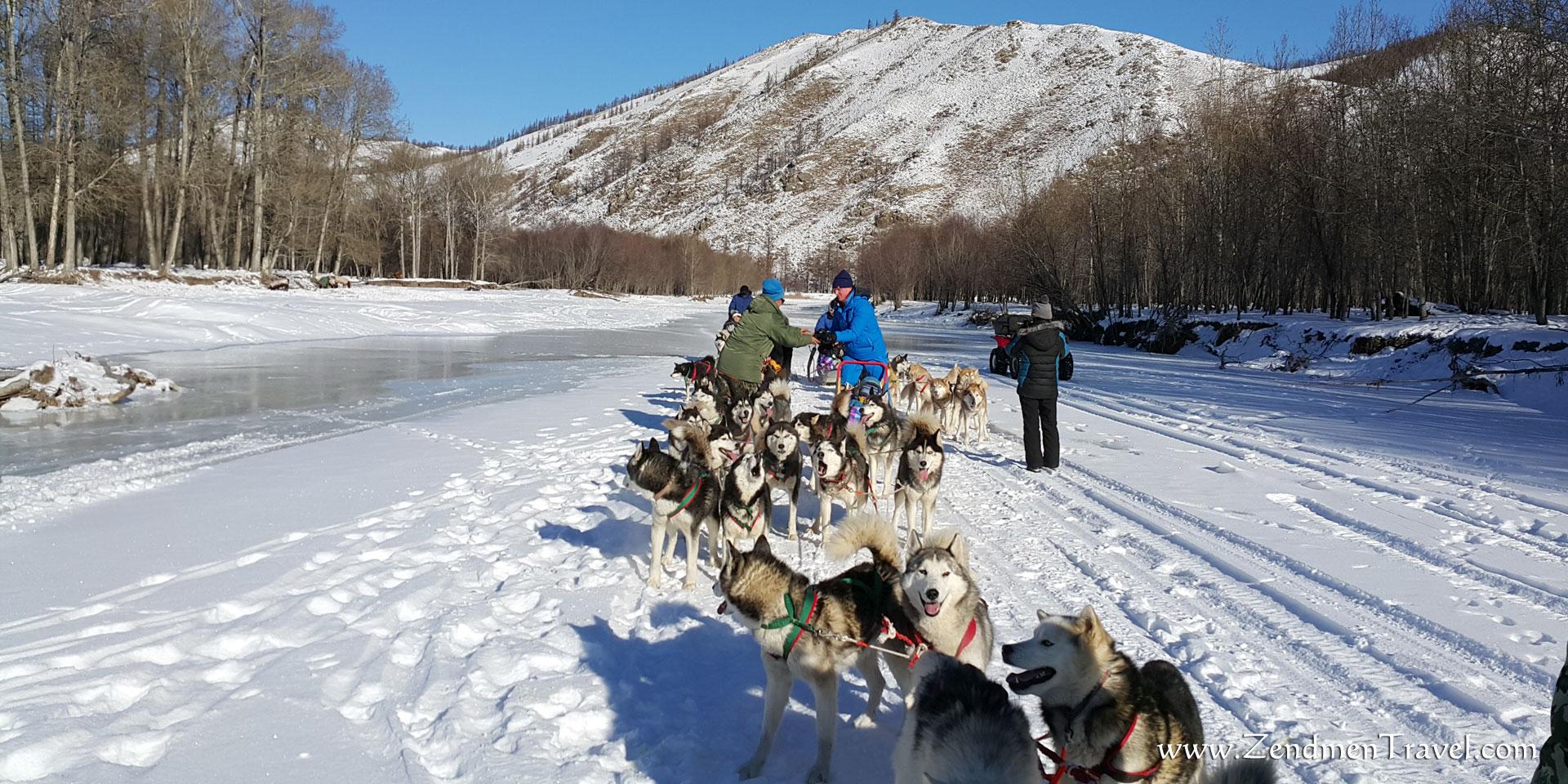 Dog Sleigh in Terelj National park